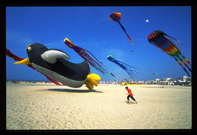 Concours photo cerfs volants de Berck