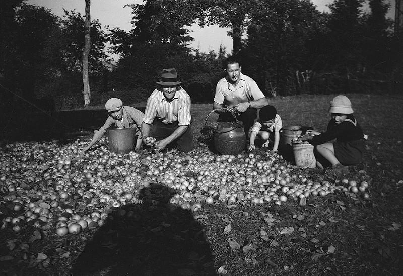 Prestation de numérisation vieille photo du sud de la France - Scan haute définition photos de famille oubliées