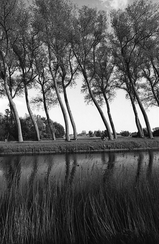 photographie noir et blanc célèbre canal poétique de Damme