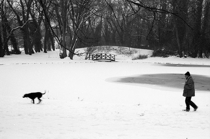 chien-et-marcheur-photo-noir-et-blanc-argentique