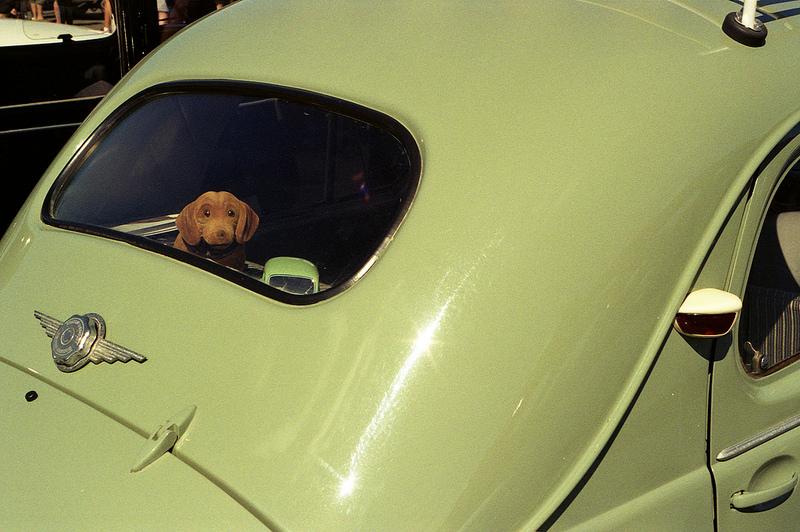 kodak-coloplus-old-car