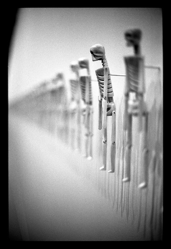 noir et blanc argentique canon eos 50 mm