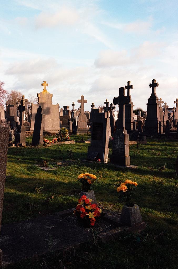 cimetière Kodak Ektar 100