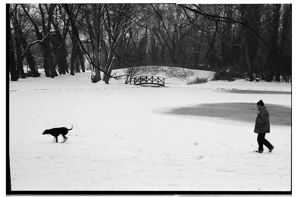 photographie d'hiver en argentique - la neige dans le parc de Wambrechies - Photographe professionnel Nord