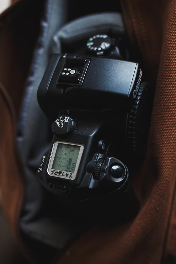 Si la photographie avec pellicules 35 mm vous attire, pourquoi pas débuter la photo argentique avec un Canon EOS 33 ?